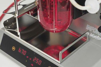 TH-Bingen-Biotechnologie-02.jpg